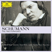 Schumann - The Masterworks de Various Artists