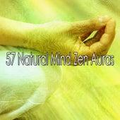 57 Natural Mind Zen Auras by Classical Study Music (1)