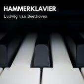 Ludwig van Beethoven - Hammerklavier von Alfred Brendel