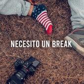 Necesito Un Break de Various Artists