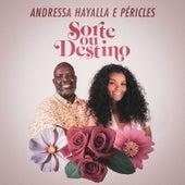 Sorte Ou Destino by Andressa Hayalla