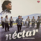 Nectar Internacional de Grupo Nectar
