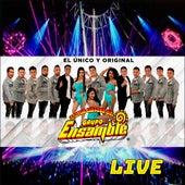 Grupo Ensamble Live (Live) by Grupo Ensamble