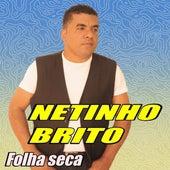 Folha Seca by Netinho Brito o rei do romantismo