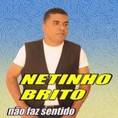 Não Faz Sentido by Netinho Brito o rei do romantismo