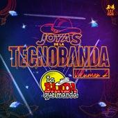Joyas de la Tecnobanda, Vol. 2 de La Banda Que Manda