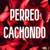 Perreo Cachondo Vol. 1 von Various Artists