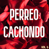 Perreo Cachondo Vol. 5 von Various Artists