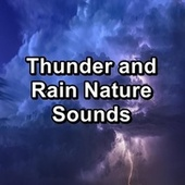 Thunder and Rain Nature Sounds by Relaxing Rain Sounds