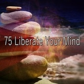 75 Liberate Your Mind de Zen Meditate