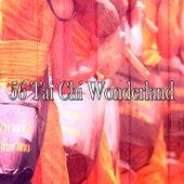 56 Tai Chi Wonderland by Classical Study Music (1)