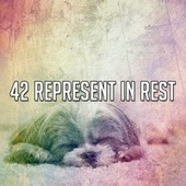 42 Represent in Rest by S.P.A