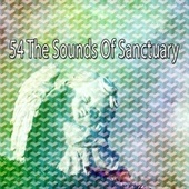 54 The Sounds of Sanctuary von Rockabye Lullaby