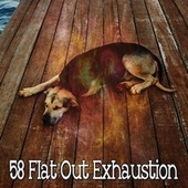 58 Flat out Exhaustion de Nature Recordings
