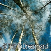 45 Trip to Dream Land de Water Sound Natural White Noise