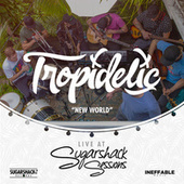 New World (Live at Sugarshack Sessions) by Tropidelic