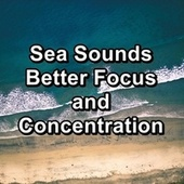Sea Sounds Better Focus and Concentration van Beach Sounds