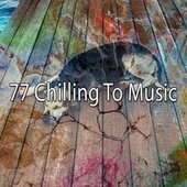 77 Chilling to Music by Baby Sweet Dream (1)