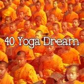 40 Yoga Dream de Japanese Relaxation and Meditation (1)
