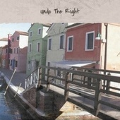 Undo The Right by Various Artists