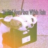 34 Find Your Place Within Rain by Thunderstorms