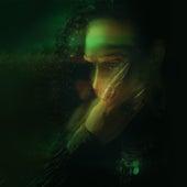 Warzone (Lee Groves Tetraphobic Remix) de Benedict