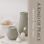 A Kind of Peace: Meditation Relax Music by Various Artists