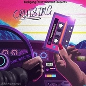 Cruising von Maestro