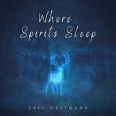Where Spirits Sleep by Eric Heitmann