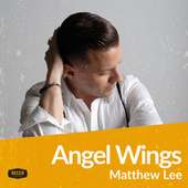 Angel Wings von Matthew Lee