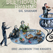 Beethoven, Brahms: Violin Concertos by Gil Shaham