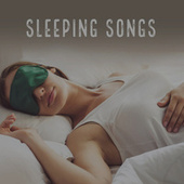Sleeping Music von Various Artists