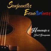Sanjuanitos Ecuatorianos: Homenaje a José Sosapanta by Various Artists