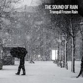 The Sound of Rain: Tranquil Frozen Rain de Lightning Thunder and Rain Storm
