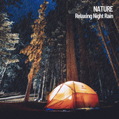 Nature: Relaxing Night Rain de Nature Sounds Nature Music (1)
