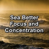 Sea Better Focus and Concentration by Chakra