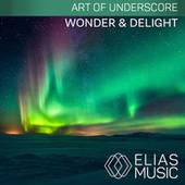 Wonder & Delight by Various Artists