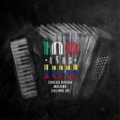 100 Años (Con Calibre 50) de Carlos Rivera