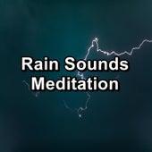 Rain Sounds Meditation by Sleep Music (1)