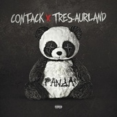 Panda by Connor Allen Tackett