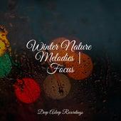 Winter Nature Melodies | Focus de Musica Reiki