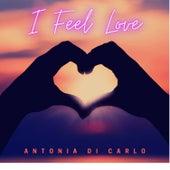 I Feel Love de Antonia Di Carlo