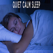 Quiet Calm Sleep by Color Noise Therapy
