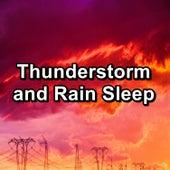 Thunderstorm and Rain Sleep by Asmr