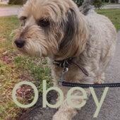 Obey von Various Artists