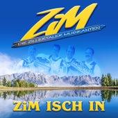 ZiM isch in van Zim - Die Zillertaler Musikanten
