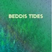 Rain Forest von Beddis Tides
