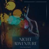 Night Adventure by Artur Bayramgalin
