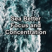 Sea Better Focus and Concentration by Meditation Music
