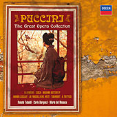 Puccini: The Great Operas by Various Artists
